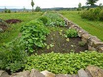 zeleninovy-zahon-vyvyseny.jpg